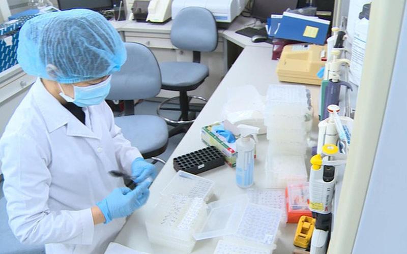 Quảng Nam thu phí xét nghiệm Covid-19 người từ Hà Nội, TP HCM đến địa phương - Ảnh 1.