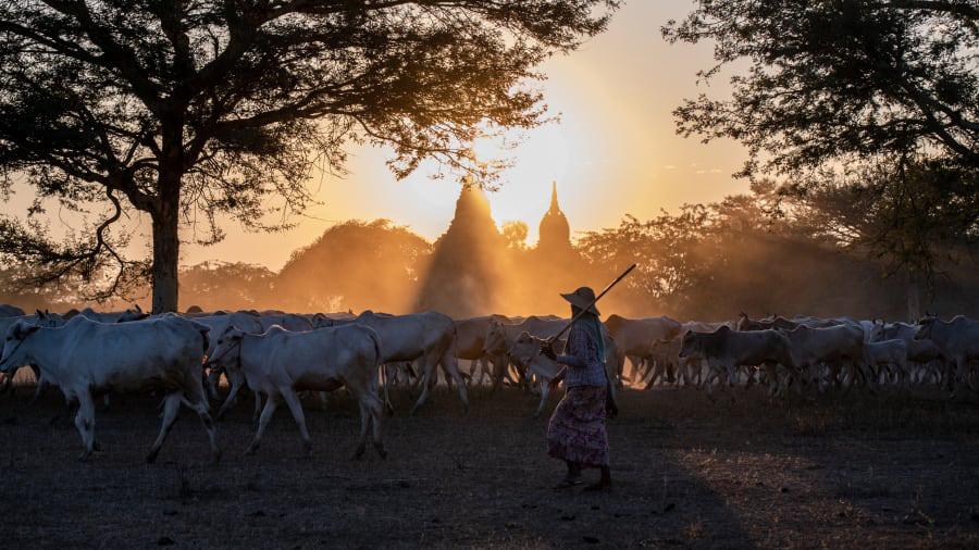 Báo CNN Mỹ bình chọn 20 bức ảnh du lịch đẹp nhất thế giới đầu năm 2020 - Ảnh 14.