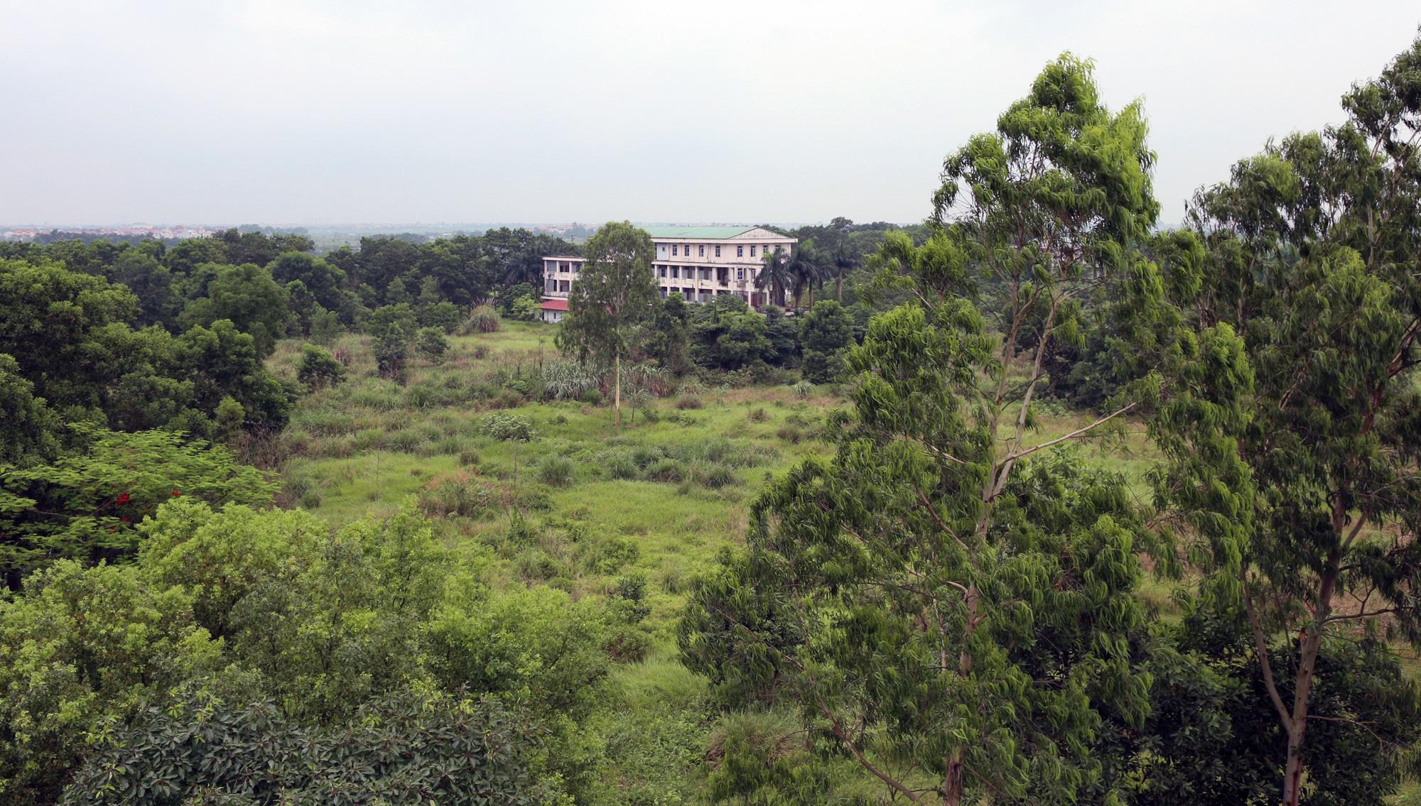 Sửa bệnh viên bỏ hoang ở Mê Linh để làm khu cách li chống dịch Covid-19 - Ảnh 2.