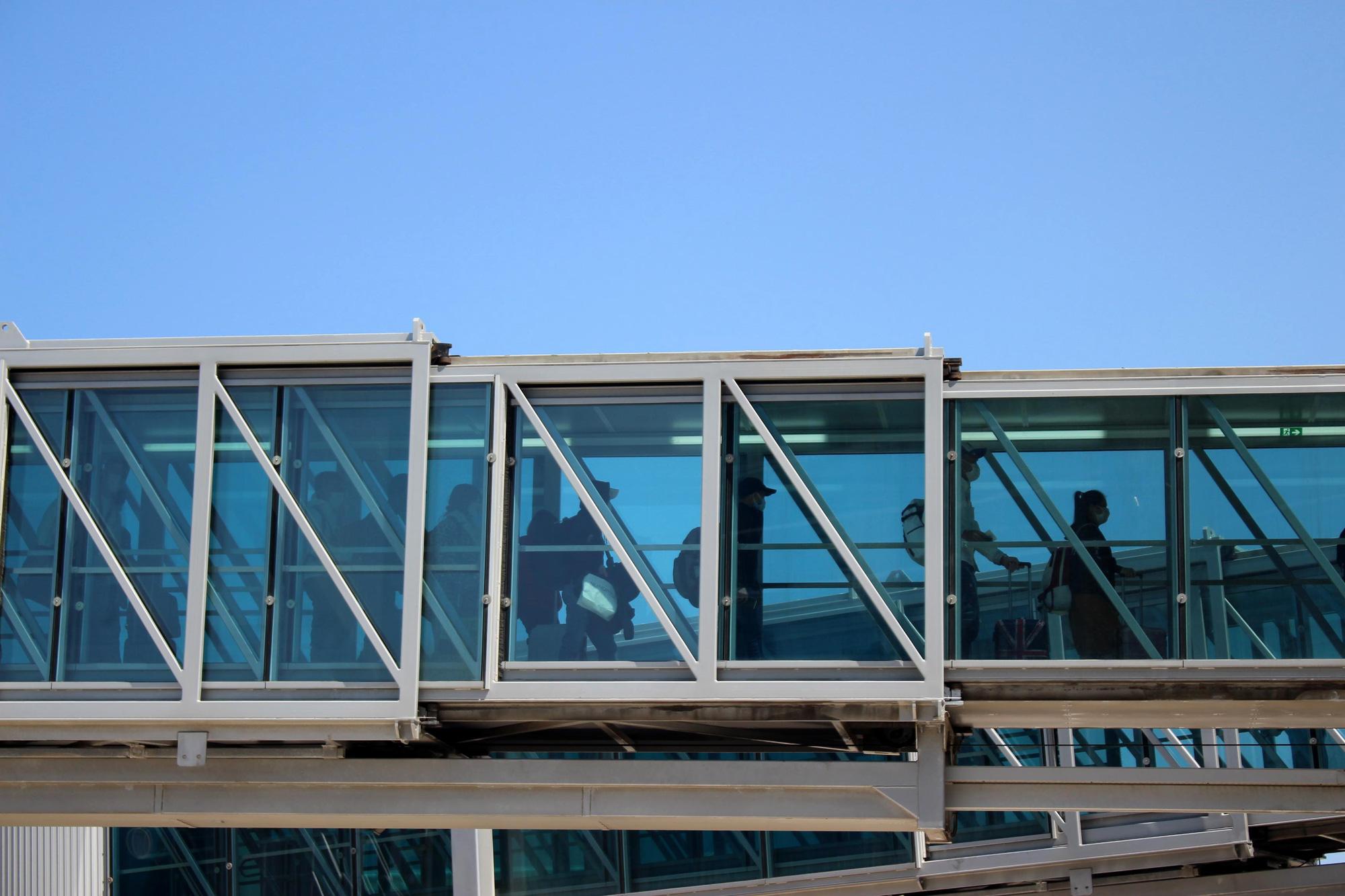 Sân bay Cam Ranh đón 412 công dân Việt Nam từ Nhật Bản về nước - Ảnh 3.