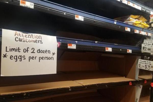 Trứng gà trở nên đắt đỏ do nhu cầu tăng vọt ở nhiều nước - Ảnh 2.
