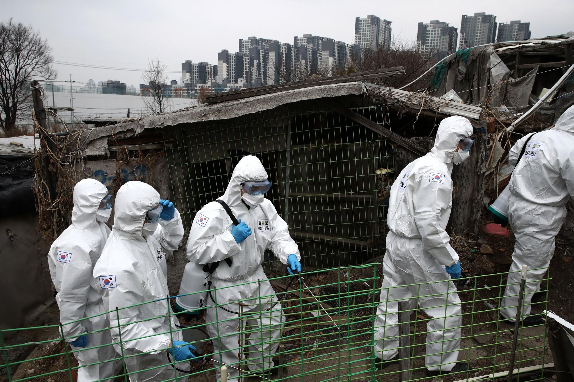 Hàn Quốc tiết lộ sẽ tăng ngân sách thêm 9,8 tỉ USD để ngăn chặn nguồn gốc dịch Covid-19 - Ảnh 1.