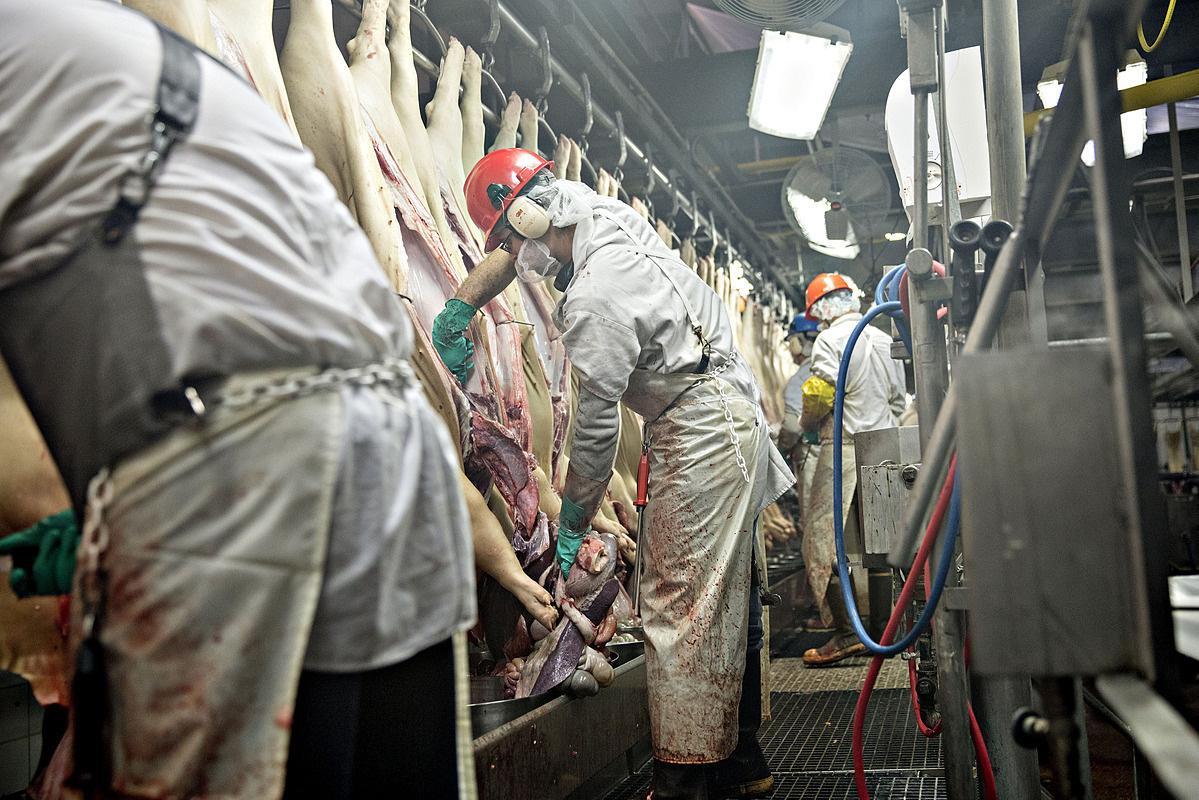 Smithfield đóng cửa vô thời hạn nhà máy thịt lợn ở Mỹ, cảnh báo tình trạng thiếu thịt sắp tới - Ảnh 1.