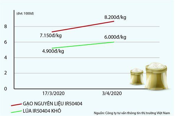 Nguồn cung thiếu hụt, giá gạo cấp thấp 'nhảy vọt' - Ảnh 1.