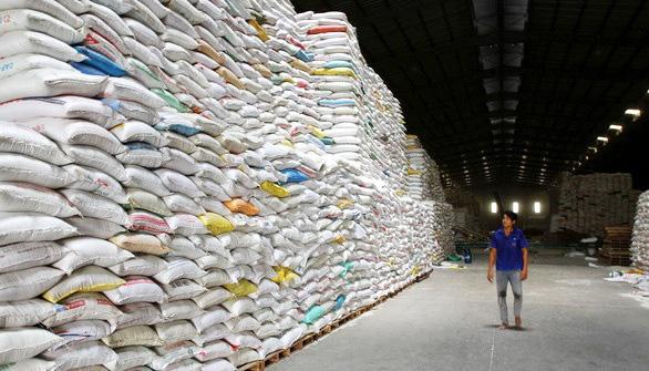 Doanh nghiệp: Chúng tôi sẽ 'chết' nếu ngừng xuất khẩu gạo quá lâu - Ảnh 1.