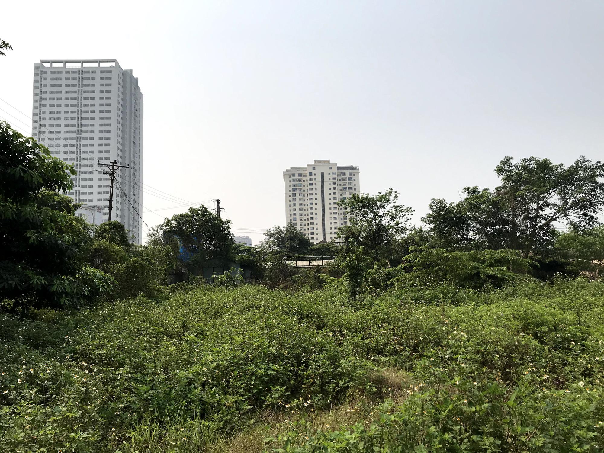 Nghệ An: Đất dự án hơn 1,1 ha ở TP Vinh bị bỏ hoang suốt 13 năm - Ảnh 13.