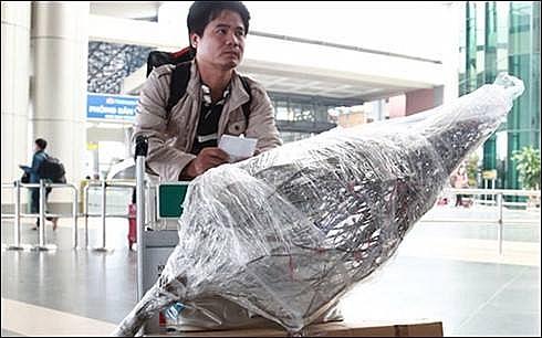 mai dao duoc len may bay van chuyen ve que an tet gia tu 350000 dong