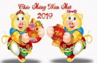 nhung ngoi chua linh thieng o ha noi de cau an dip dau nam moi 2019