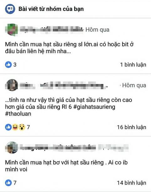 thu mua hat sau rieng dat hon qua sau rieng thuong lai van lai dam