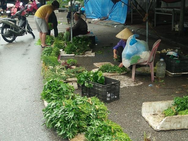 don bao mangkhut gia thit heo va rau tai cho bat dau ruc rich tang cao