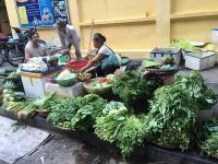 gan 450 container nhua phe lieu ton la cua mot doanh nghiep vua bi khoi to