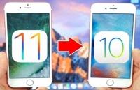 apple chon lg lam man hinh cho iphone gap vi so samsung lam lo thiet ke