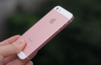 iphone 5c gia 19 trieu o at tro lai viet nam