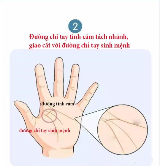4 duong chi tay cua nguoi phu nu hanh phuc van phan khi ket hon muon