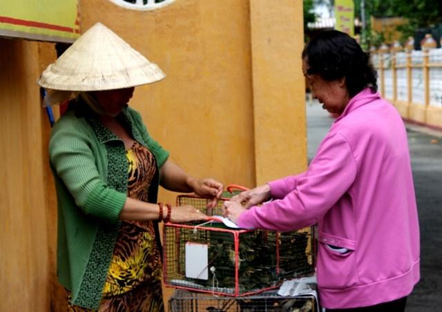 8 sai lam can tranh khi phong sinh mua vu lan