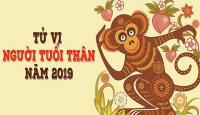 tu vi nam 2019 tuoi hoi thi phi rinh rap tai van thang hoa vua tam