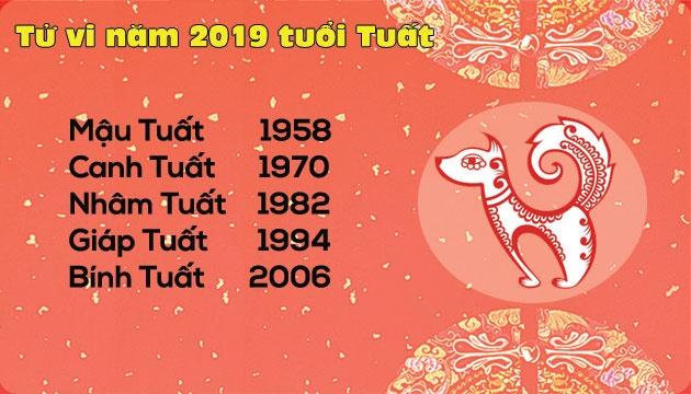 tu vi nam 2019 tuoi tuat tran day co hoi tang truong cham ma chac