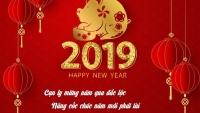 countdown 2019 top 4 su kien chao don nam moi duoc gioi tre mong cho nhat