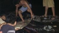 thieu phu giau chong di ban dam duoc huong an treo do mang thai